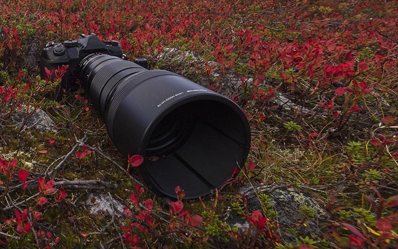 autumn colors photography
